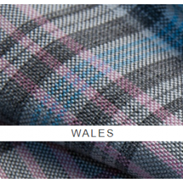 Уэльс (wales)