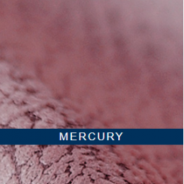 Меркурий (mercury)