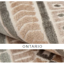 Онтарио (ontario)