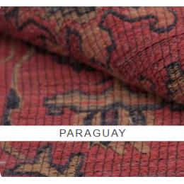 Парагвай (paraguay)